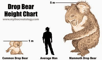 Drop Bear Size Chart