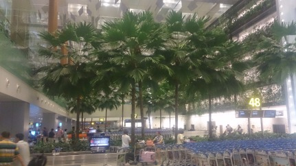 Trees in the Baggage Hall
