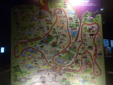 Night Safari Map