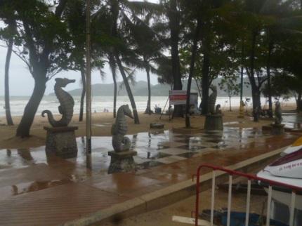 Patong Seahorses