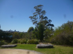 (pic - Story) Drummoyne - Clarkes Point Reserve 02