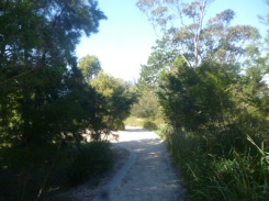 (pic - Story) Drummoyne - Clarkes Point Reserve 03