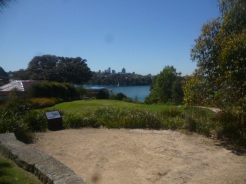 (pic - Story) Drummoyne - Clarkes Point Reserve 04