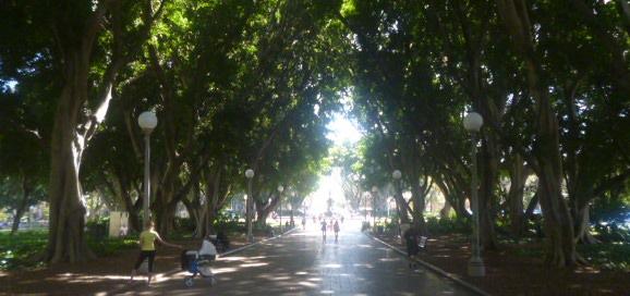 Hyde Park Title