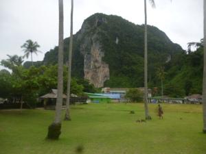 Ko Phi Phi Don Paddock