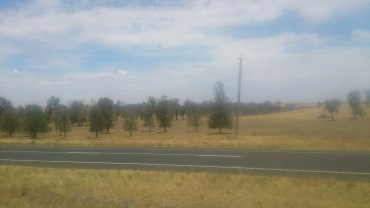 (pic - Story) Overland - Wimmera Plains 01