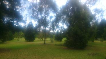 (pic - Story) Adelaide Gardens - Botanic Park 01