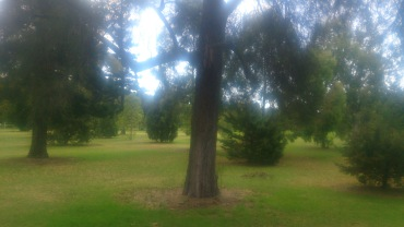 (pic - Story) Adelaide Gardens - Botanic Park 02