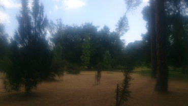 (pic - Story) Adelaide Gardens - Botanic Park 03