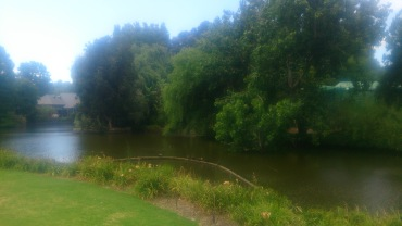 (pic - Story) Adelaide Gardens - Lake 01