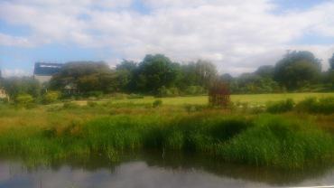 (pic - Story) Adelaide Gardens - Swamp 03