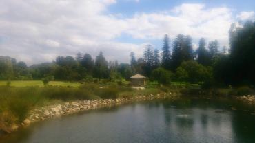 (pic - Story) Adelaide Gardens - Swamp 04