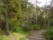 (pic - Story) Double Bay - Trumper Park 01