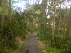 (pic - Story) Double Bay - Trumper Park 03