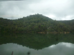 (pic - Story) Gosford Glyphs - Hawkesbury River 03