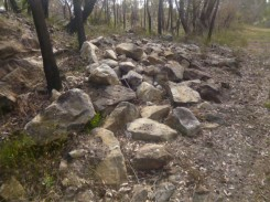 (pic - Story) Gosford Glyphs - The Ridge 02