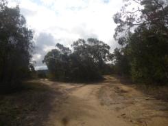 (pic - Story) Gosford Glyphs - The Ridge 04