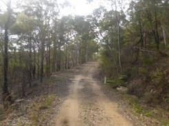 (pic - Story) Gosford Glyphs - The Ridge 07