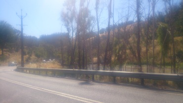 (pic - Story) Gumeracha - Bush Fire 02