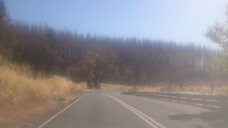 (pic - Story) Gumeracha - Bush Fire 03