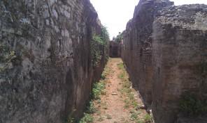 A Street in Argos
