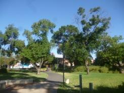 (pic - Story) Norwood - Stepney Park 05