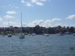 (pic - Story) Parramatta - Kissing Point 03