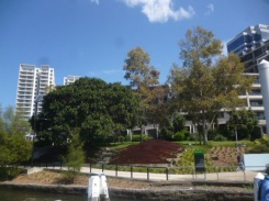 (pic - Story) Parramatta - Wharf 04