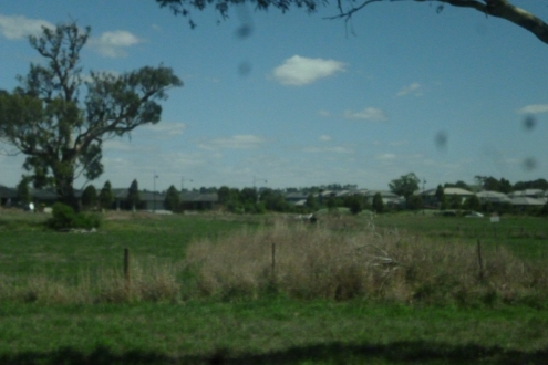 (pic - Story) Whittlesea - Farmland 01