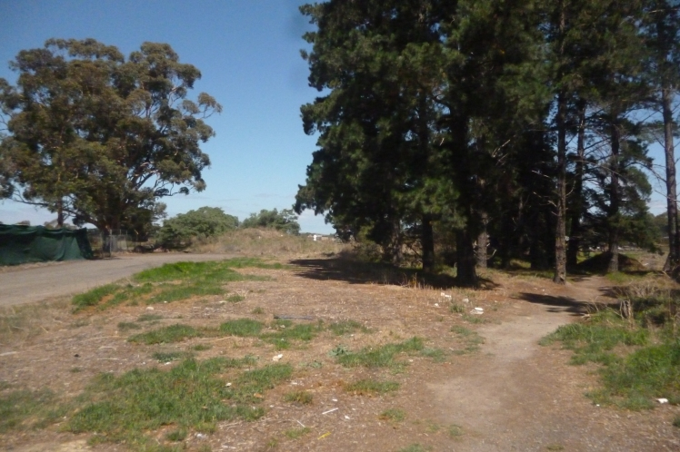 (pic - Story) Whittlesea - Railway Reserve