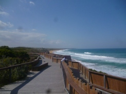 (pic - Story) Warnambool - Logans Beach 02