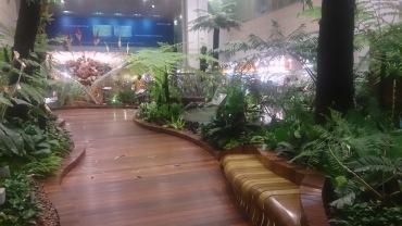 pic-story-singapore-2016-changi-05