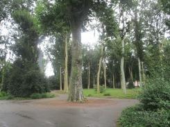 pic-story-dusseldorf-hofgarten-01