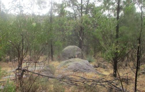 (pic - Story) Para Wirra - Lizard Rock