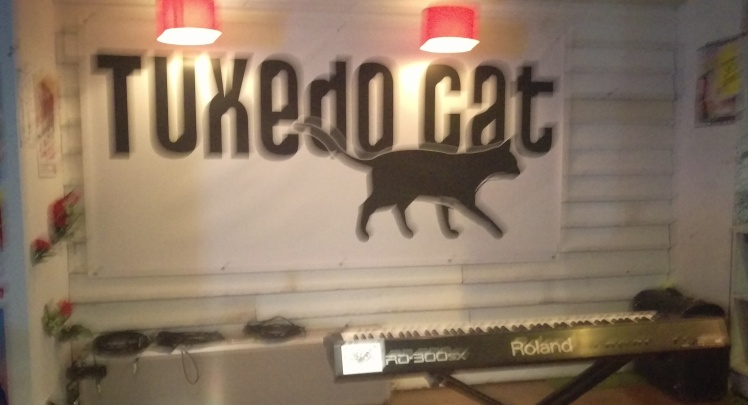 (pic - Story) Comedy Festival - Tuxedo Cat