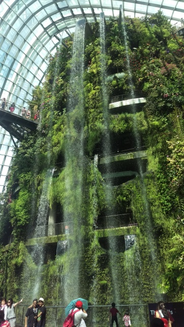 (pic - Story) Gardens - Cloud Forest 01