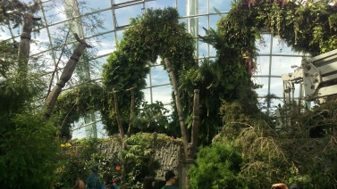 (pic - Story) Gardens - Cloud Forest 03