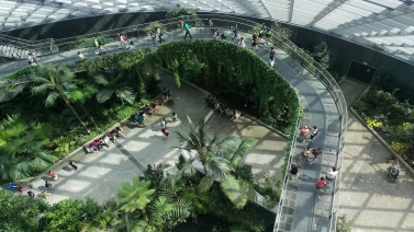 (pic - Story) Gardens - Cloud Forest 04