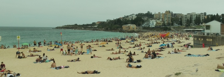 (pic - Story) Coogee - Title