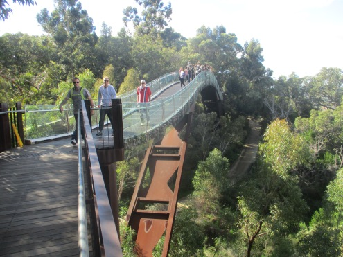 (pic - Story) Kings Park - Walkway 04